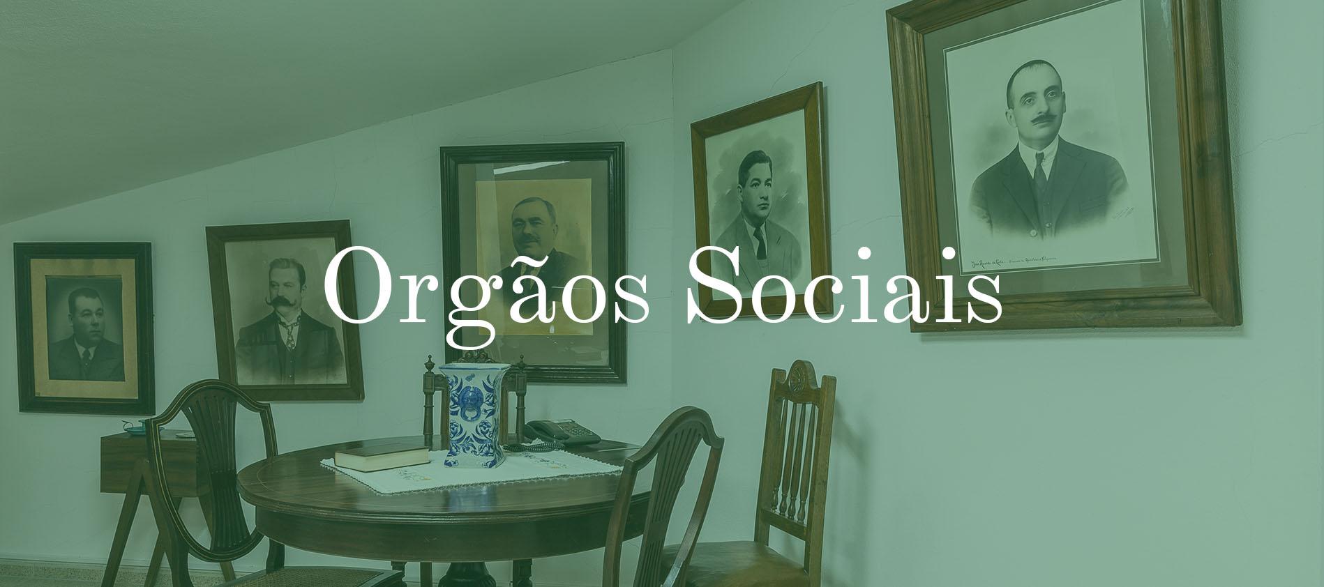 Orgãos Sociais